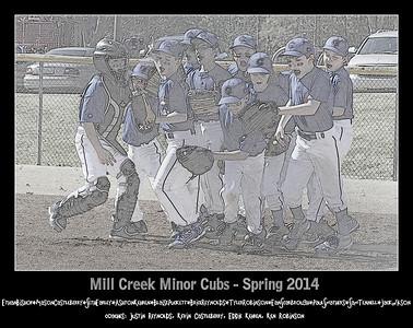 Cubs - Spring 2014