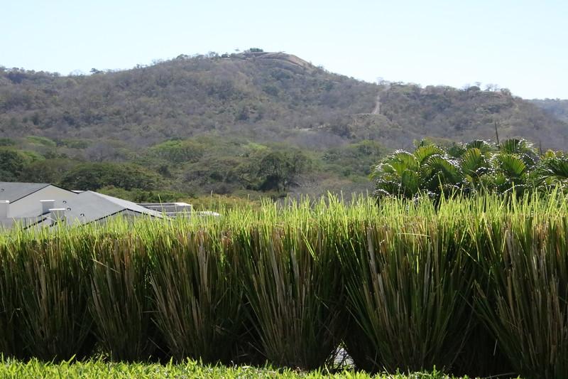 2020 Costa Rica 0042.JPG