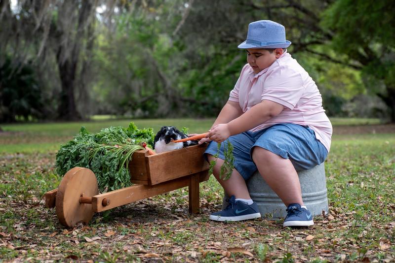 Mena wheelbarrow II.jpg