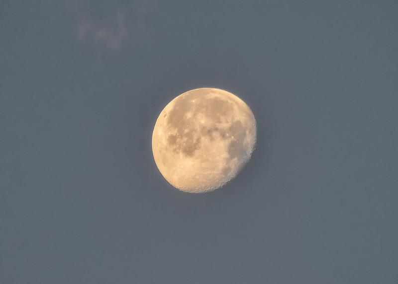 NEA_1197-7x5-Moon.jpg