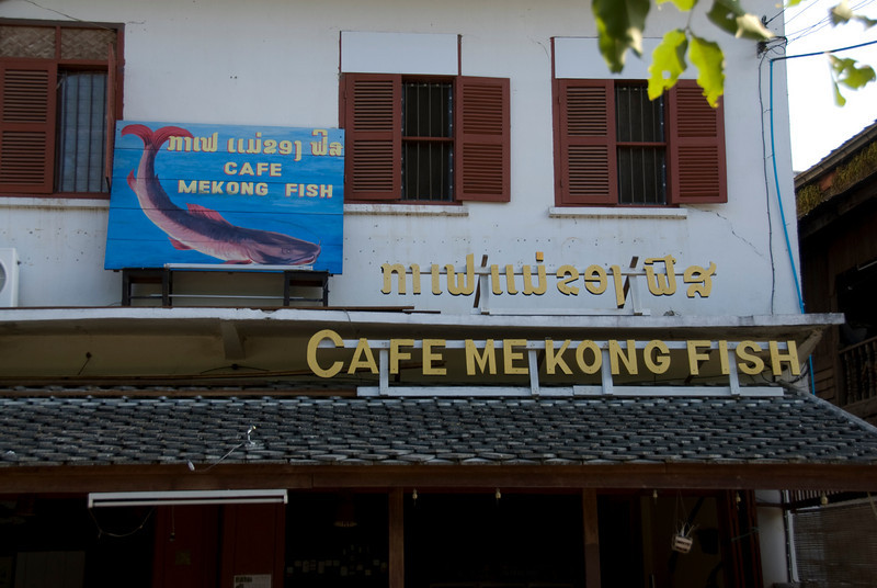 Cafe Mekong Fish Sign at Luang Prabang, Laos