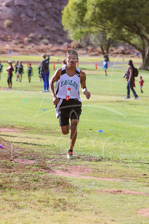 2015 HS Cross Country