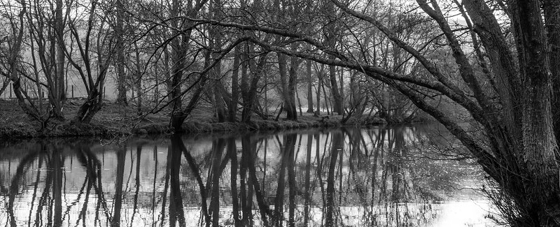 Tree-lined River Stour in Dorset