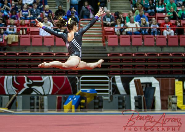 State Gymnastics Tournament 2014