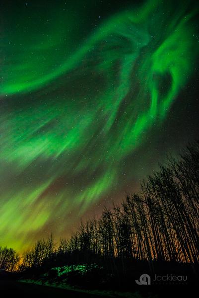 2015-AuroraJAU_3656.jpg