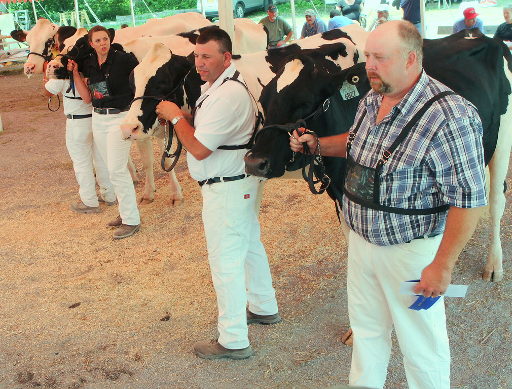 . Brett Roberts along with fellow competitors show cattle in the Senior two year class at the Boonville Oneida County Fair on Tuesday, July 22, 2014 in Boonville. the fair runs through Sunday, July 27, 2014.  JOHN HAEGER-ONEIDA DAILY DISPATCH @ONEIDAPHOTO ON TWITTER