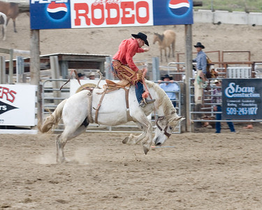 2006 Rodeo Bronc and Bareback