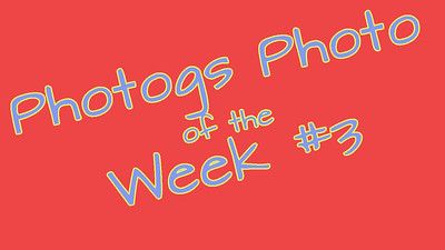 Photogs Best of the Week #3