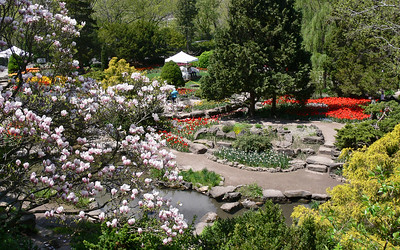 Rock Garden (before 2014 Renovation)