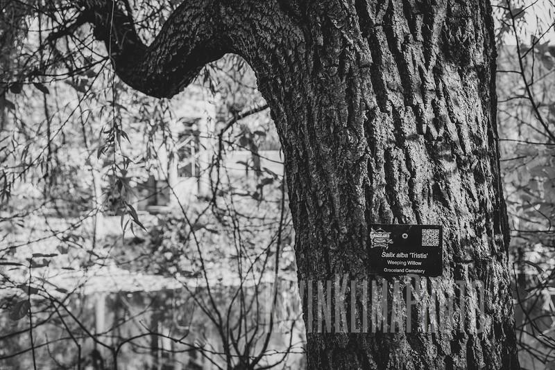 Graceland110218-270.jpg