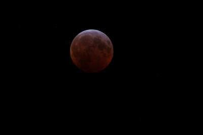 19_01-20 Blood Wolf Moon Eclipse