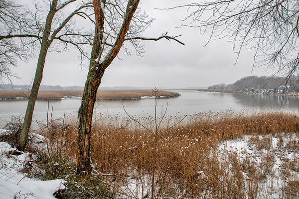Winter Storm February 11, 2019