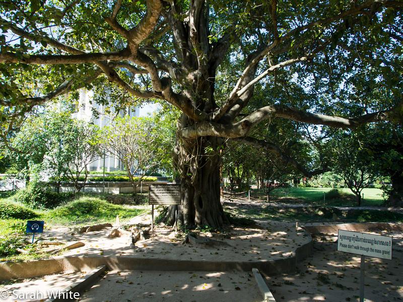 131101_PhnomPenh_197.jpg
