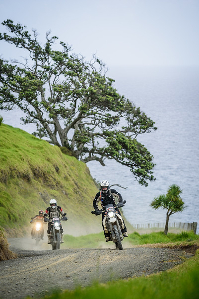 2018 KTM New Zealand Adventure Rallye - Northland (631).jpg