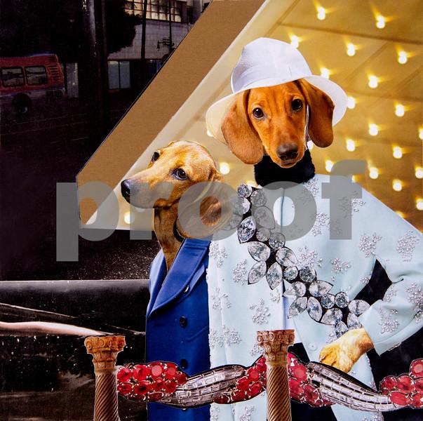 Canine Prints