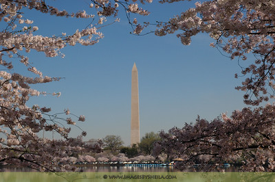 Metropolitan Washington, DC