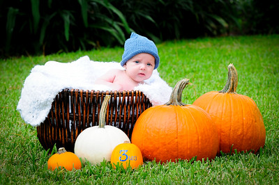 Will - 3 month old photos    10/10/2015