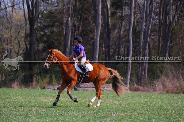 Combined Training & Hunter Pace Shows