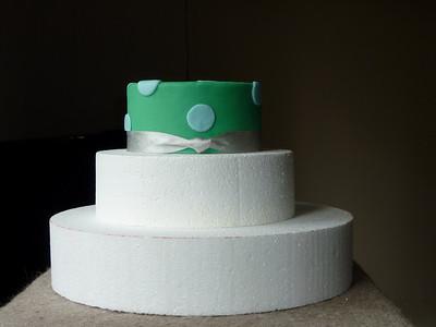 2010.03.11-Demo.Cake