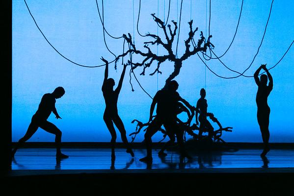 Austin Ballet 'Light'