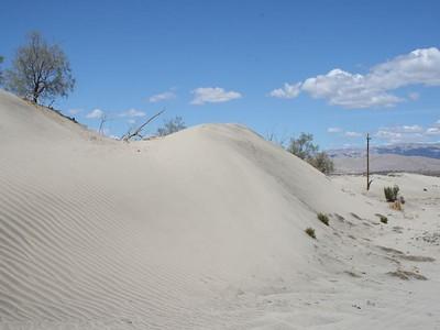 Sand Dunes 38