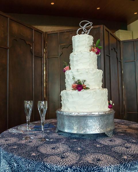 DSR_20140809Gayoso Wedding54.jpg