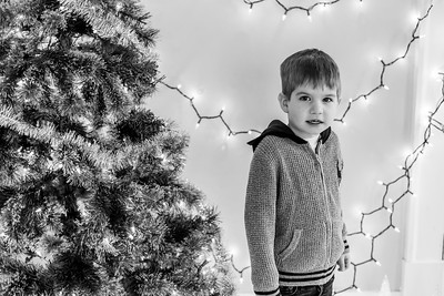 Celia Christmas Mini
