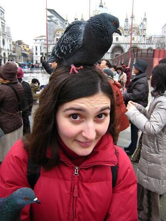 Vienna , Venice,  Turkey Nov. - Dec. '08