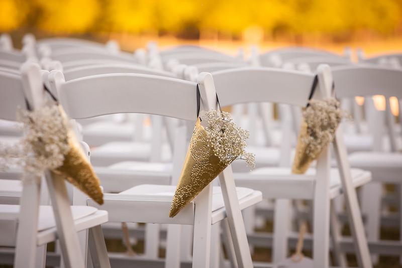 Pearson Wedding-1483.jpg