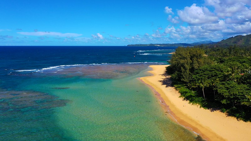 Kauai Stock  4K  Video for sale! At below Shutterstock Prices!