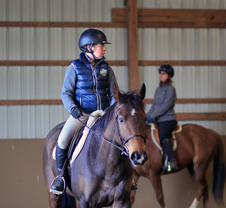 TSRC 2019-03-27 Milestone Sport Horses Pictures