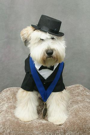 Cutchogue Canine Classic