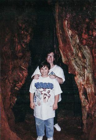 1994-06 | Muir | Santa Rosa | Simi | Fremont | CA
