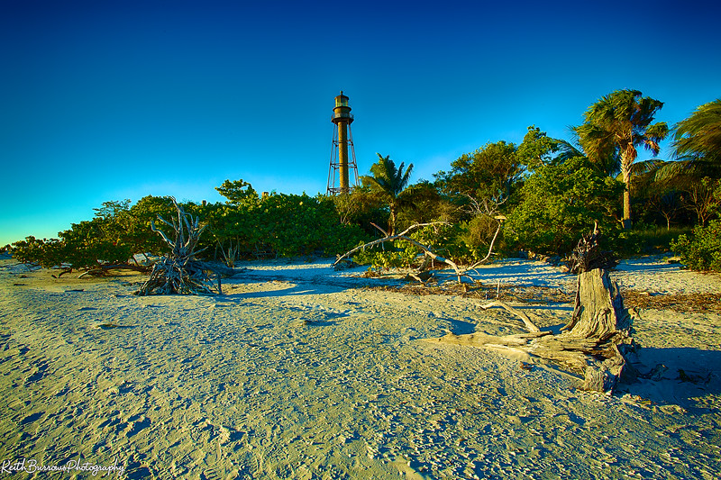 Sanibel Feb_2013_ 9.jpg