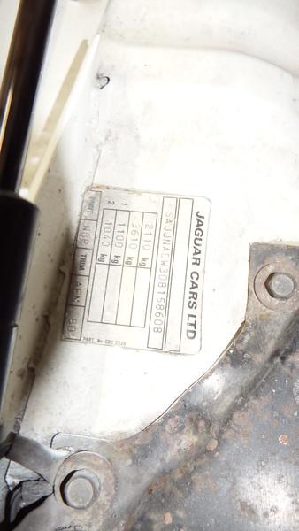DSCF7624.JPG