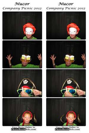 07/09/2012 Nucor Corporate Picnic (PhotoStrips)