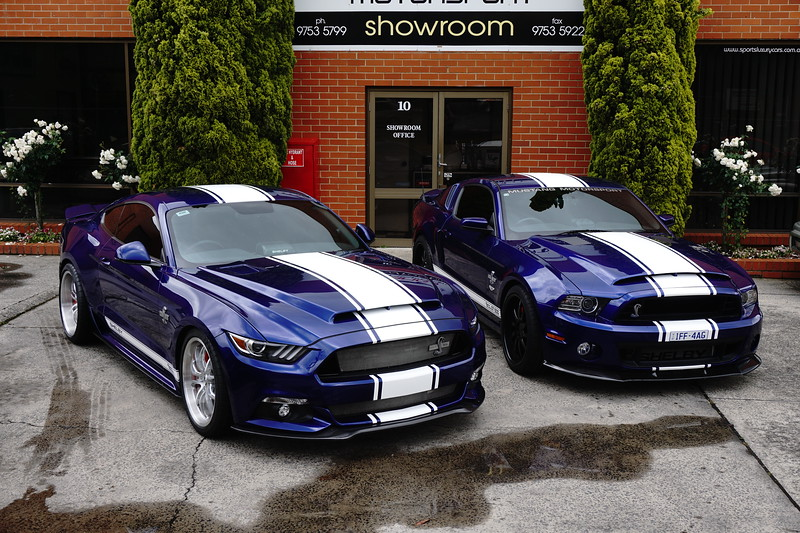 SHELBY SUPERSNAKE CSM:16SS0705