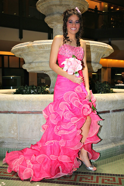 Brenda Callejas 15 Birthday