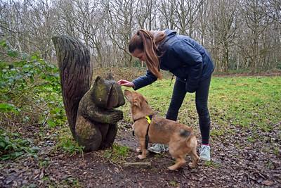 HOSPITAL PLANTATION DOG WALK (2)