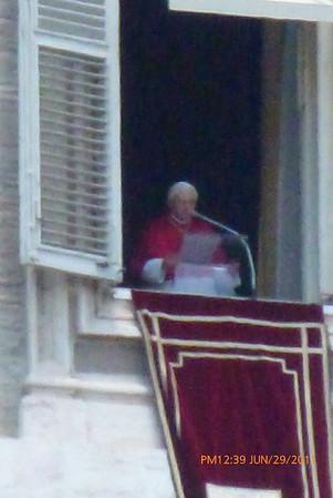 Pallium Mass 2011