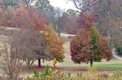 Candler Park in Autumn