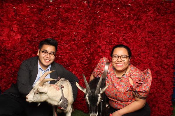 Goat My Valentine 2.14.20