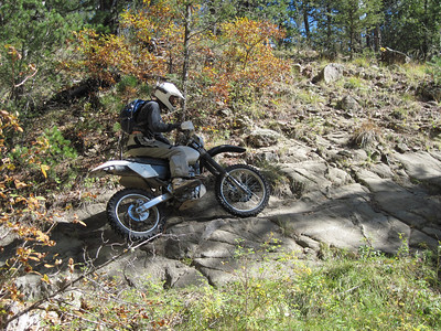 Jemez Mtns. - Bland-Cochiti side ST Ride  10-11-10
