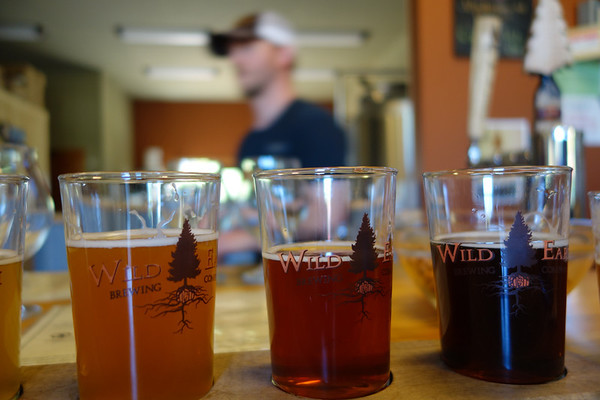 Wild Earth Brewing; Roslyn, WA
