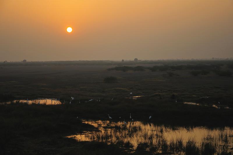 Sunrise-hues-LRK-01.jpg