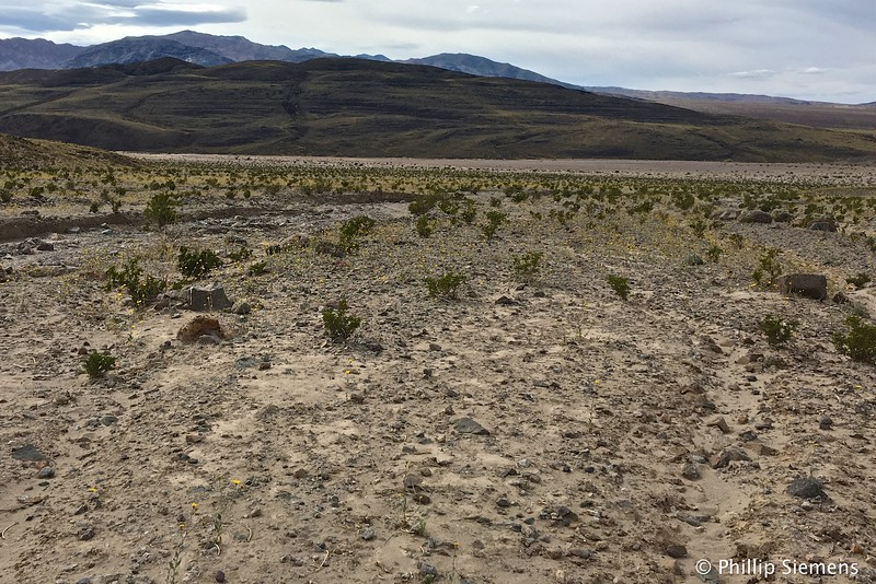 Ancient Lake Manley shorelines in south part of Death Valley