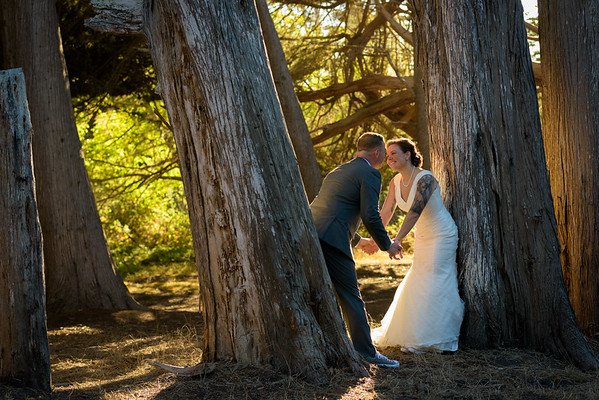 Tiffany and Mike (Elopement Photography) @ Moss Beach, California