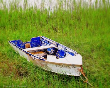 Carolina Coastal Scenes