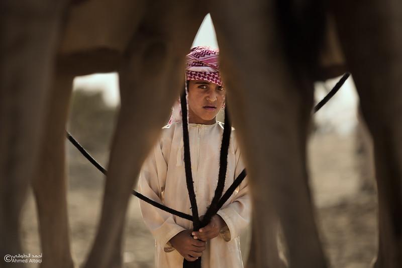 IMGL8991-Edit-2 (1)- Camel Race.jpg