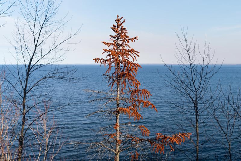 Duluth Lake Walk 4-17-0487.jpg